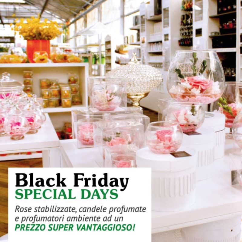 Colora Il Tuo Black Friday Con Gli Articoli In Speciale Promo Del Garden La Primula Di Siziano