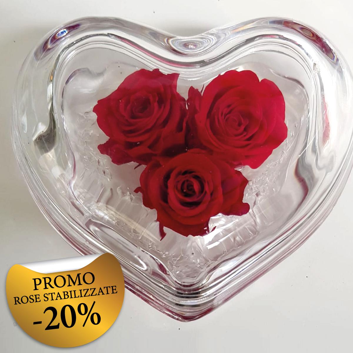 Promo Rose Stabilizzate