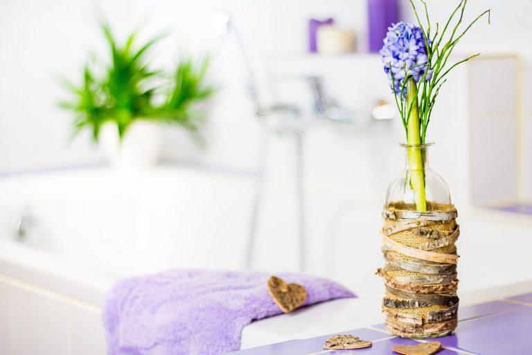 Piante per il bagno giacinto