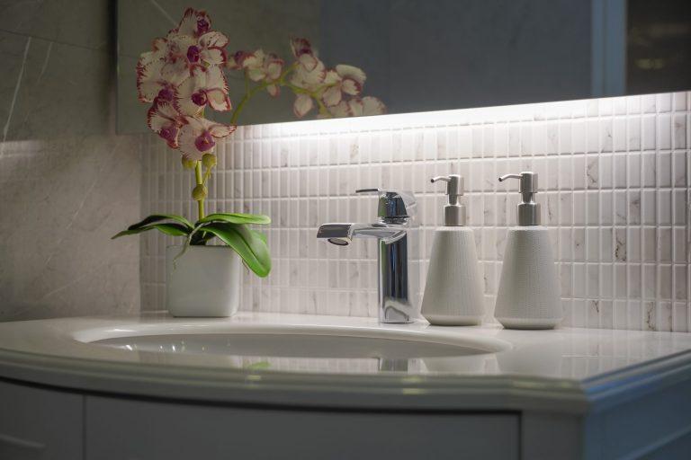Piante per il bagno orchidea